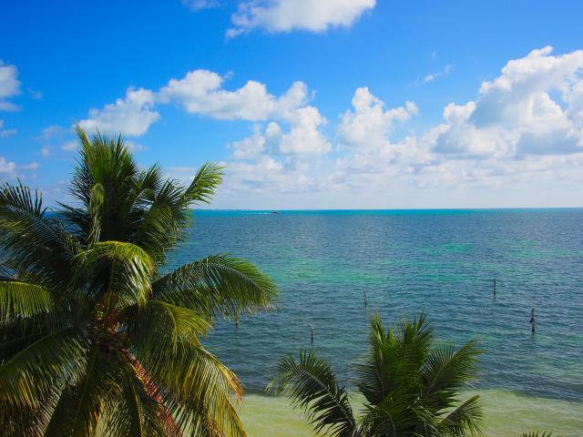15242 Cancun Oceanfront Condo 2 Bed / 2 Bath for under  - Condo