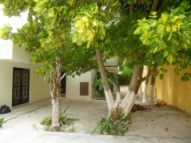 Cozy Two Story Beach House In Progreso, Yucatan Coast