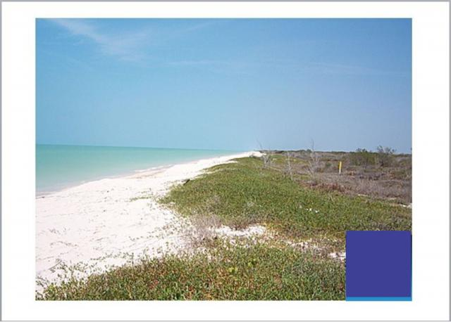 Beachfront lot in Celestun Yucatan, 1,500 M2 property for sale