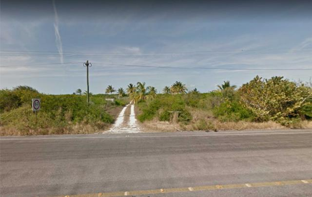 Beachfront Land 40 x 80 m. in San Bruno, Yucatan property for sale