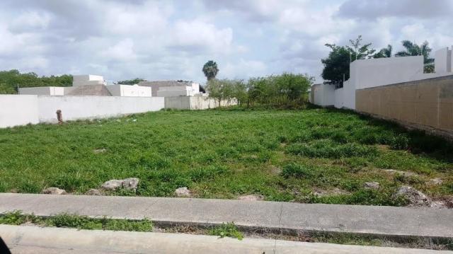 18481 Lot in Temozon  - Lot
