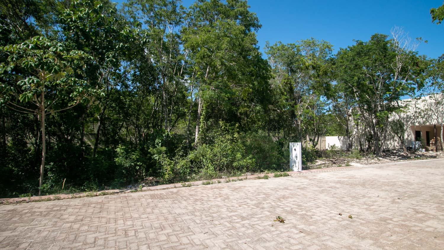 residential-lot-titled-playa-del-carmen-downtown-Exterior