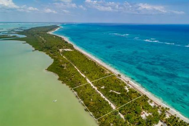 Magnificent lot in the Sian Ka'an reserve ideal for investors property for sale