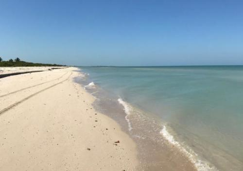 Ocean view lot for sale in Sisal Yucatan property for sale