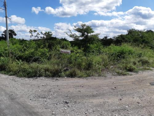 Excellent lot for investment in El Paraíso