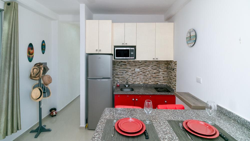 1-bedroom-Condo-near-the-Fifth-Avenue-Playa-del-Carmen-Kitchen