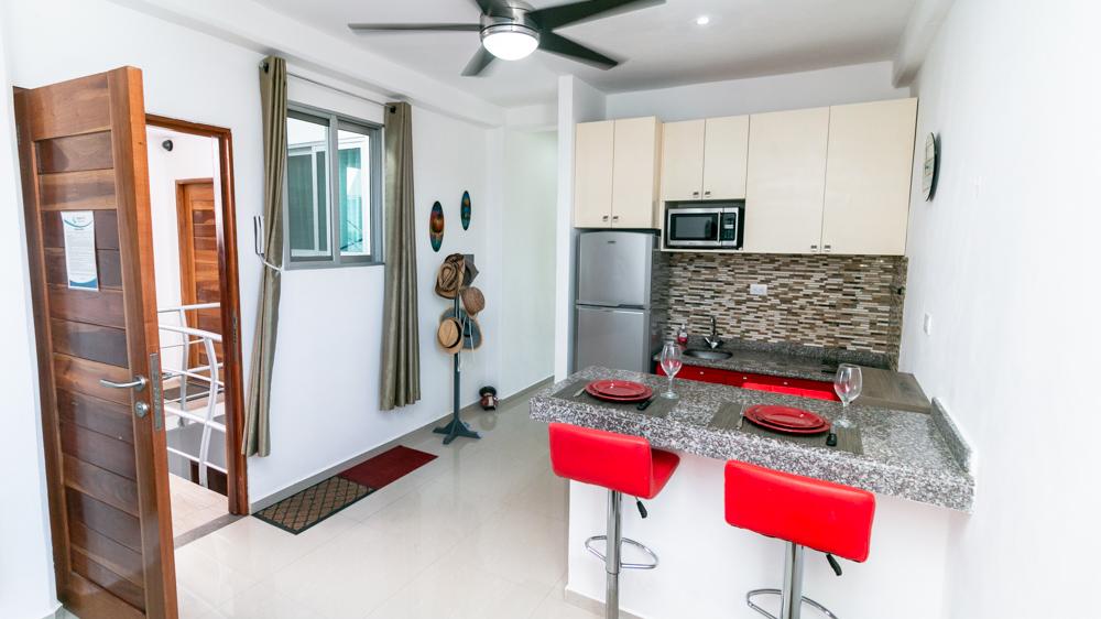 1-bedroom-Condo-near-the-Fifth-Avenue-Playa-del-Carmen-LivingRoo