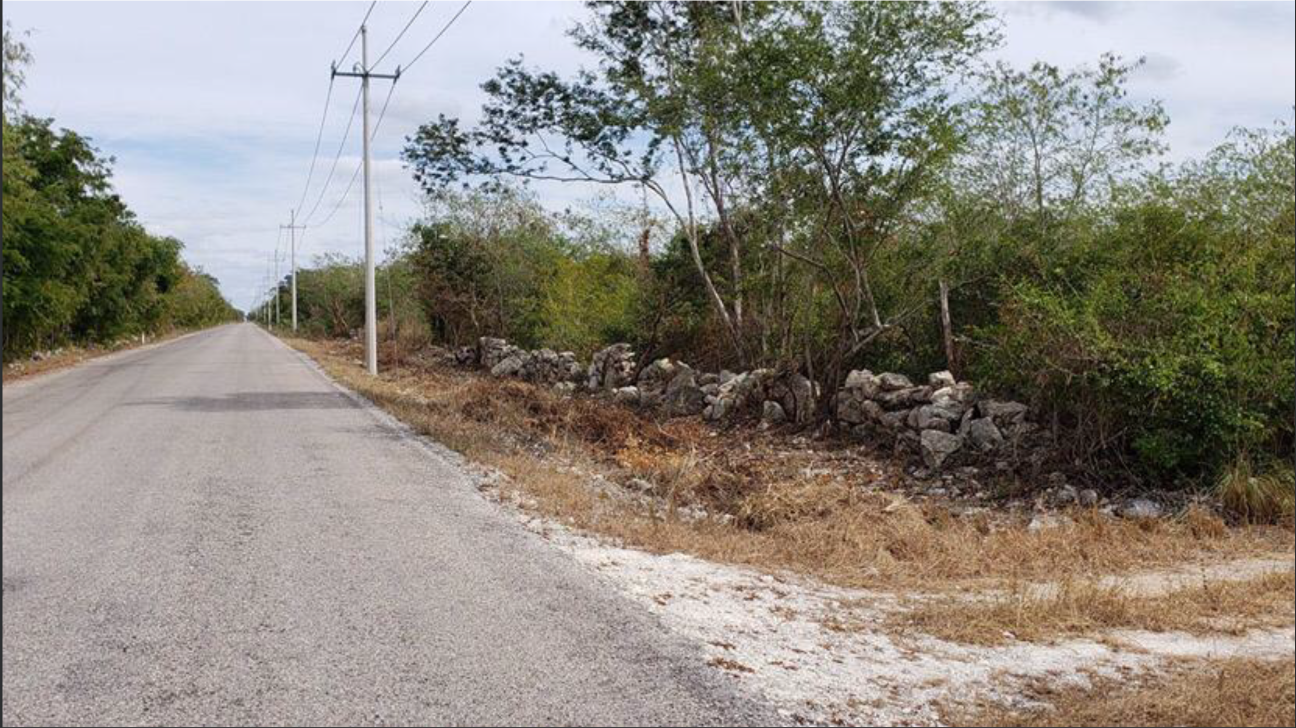21186 Investment Opportunity on the Outskirts of  - Lot