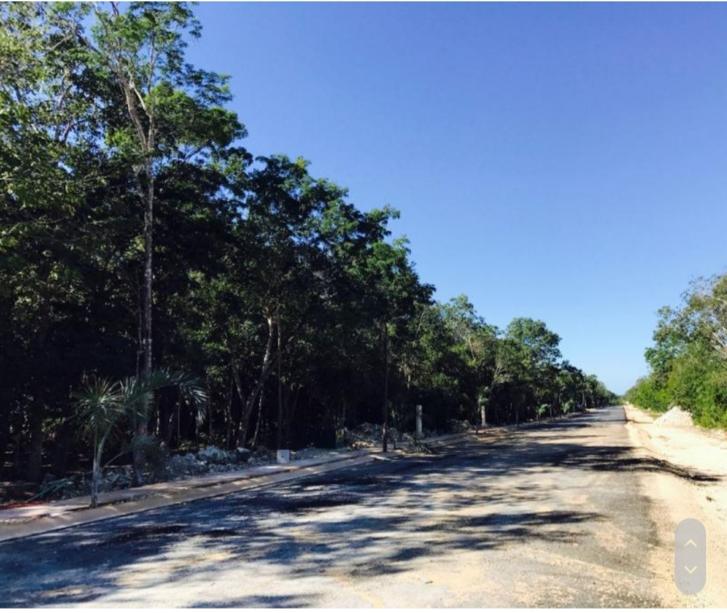 4 lots of 2228.13 sqf each in a gated community of Tulum