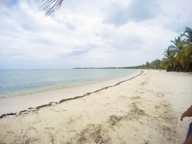 Beachfront lot in Tulum Preserve, Great Opportunity property for sale