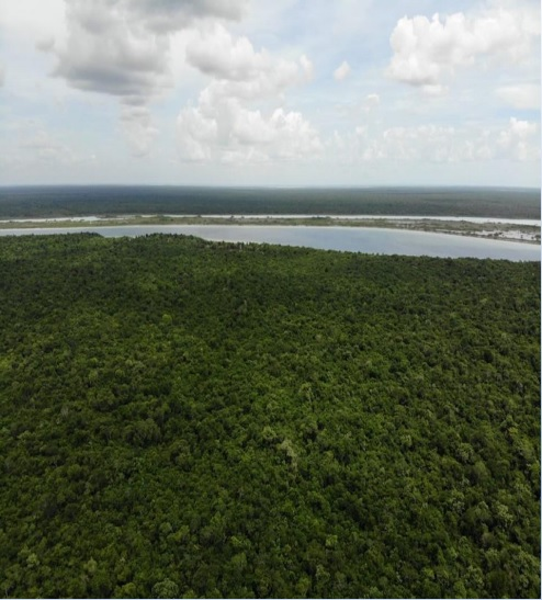 Beatiful land in front of the lagoon in Bacalar