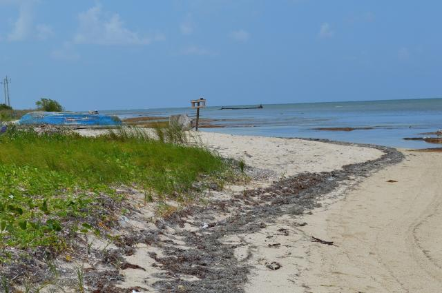 Incredible Lot Located a few miles north of Mahahual