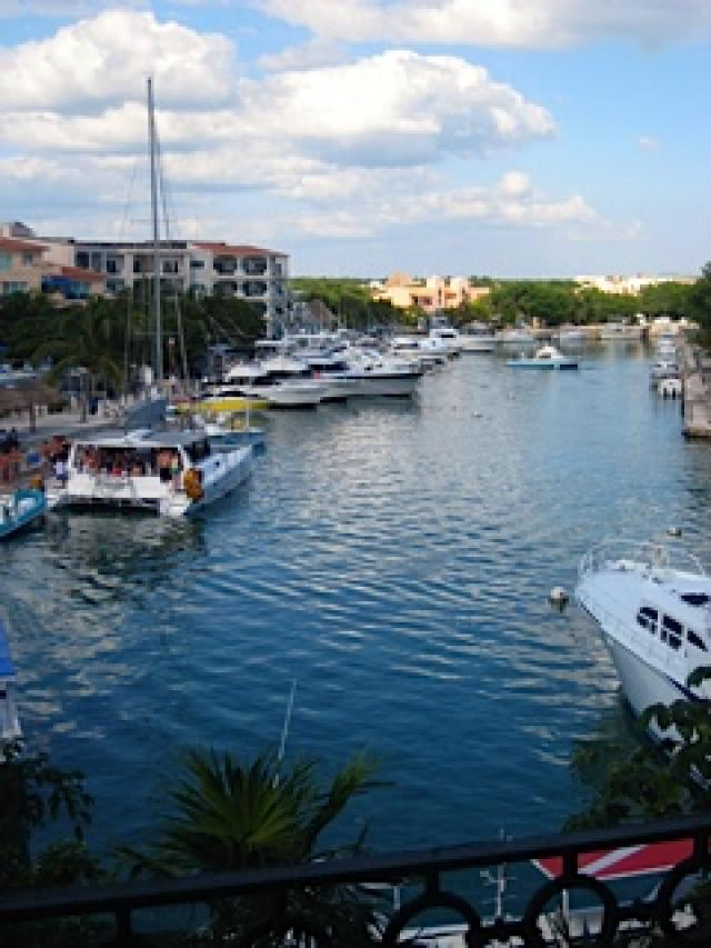 8846 Spacious 2 bedroom condo overlooking the marina & dolphin  - Condo
